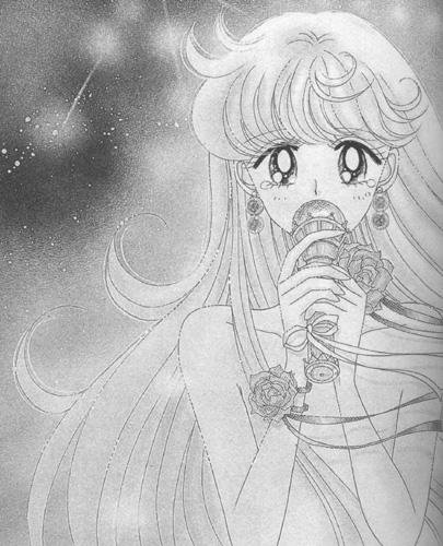 美丽的记忆-美少女战士