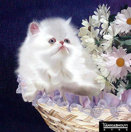 长球编小动物步骤图小猫