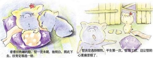 两只小猪的感人爱情(转载)