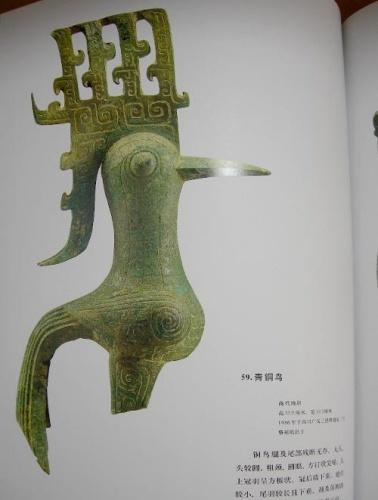 秦岭神树结构图