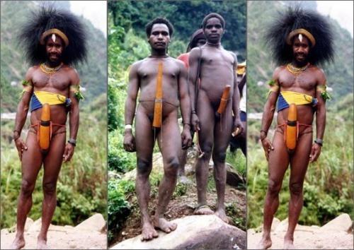 非洲象人族的生殖器这么长