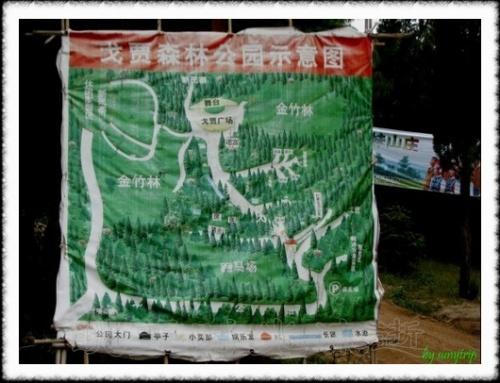 走遍云南--红河个旧戈贾森林公园