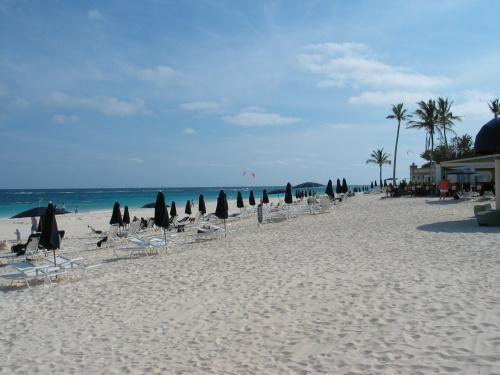 百慕大岛的粉色沙滩海滨浴场有十几处,我们只去了南岸的 elbow beach