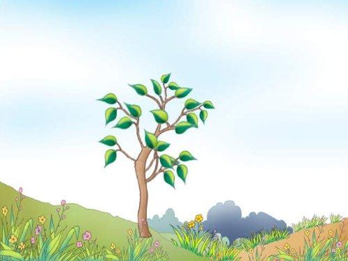 和小树一起成长