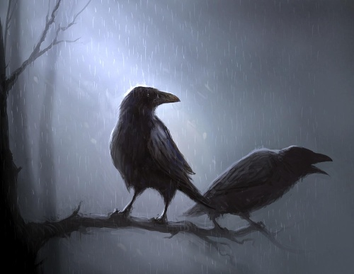 乌鸦在北欧神话中,是主神奥丁的左右仆从.