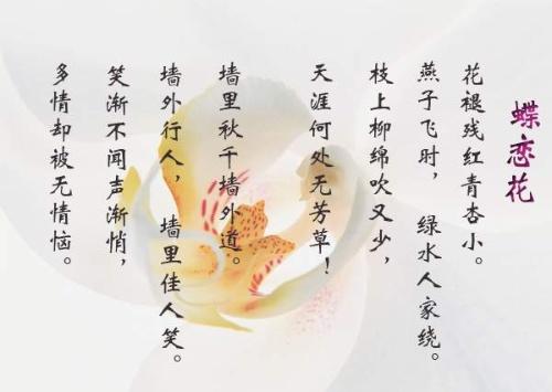 苏轼《蝶恋花》赏析蝶恋花①苏轼花褪残红青杏小.