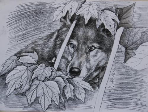简单可爱动物素描画