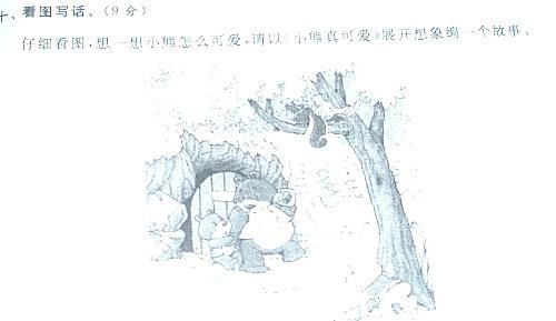 可爱的小熊----看图写话