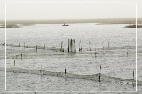 沭阳湾河森林公园